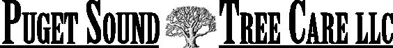 pugettree